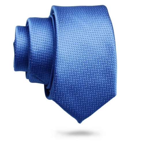 Royal Blue Tie for Men on Business Occasion